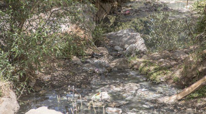 Zacatecas: Confirman contaminación por Mina San Martín (NTR)