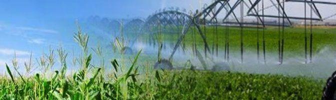 La industria alimentaria absorbe el 70% del consumo mundial de agua (Aguas residuales)
