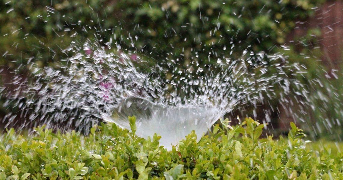 Aún falta mucho por hacer: la importancia de mejorar la relación entre el agua y la agricultura