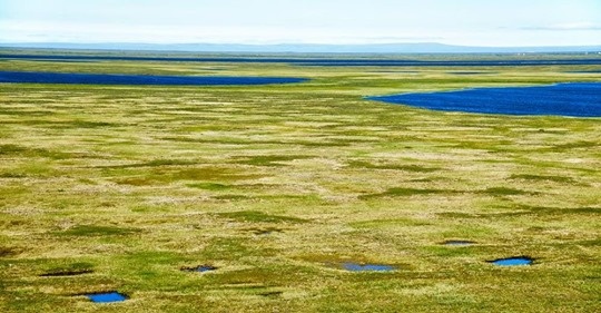 Estados Unidos: El permafrost ártico se derrite 70 años antes de lo previsto (Eco Inventos)