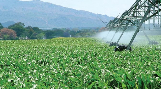 CDMX: Alerta FAO de alto consumo de agua en agro e industria (MILENIO)