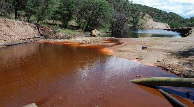 Sonora: AMLO y Taddei deben cancelar nueva presa de Grupo México y obligarlos a no contaminar: activista (proyecto puente)
