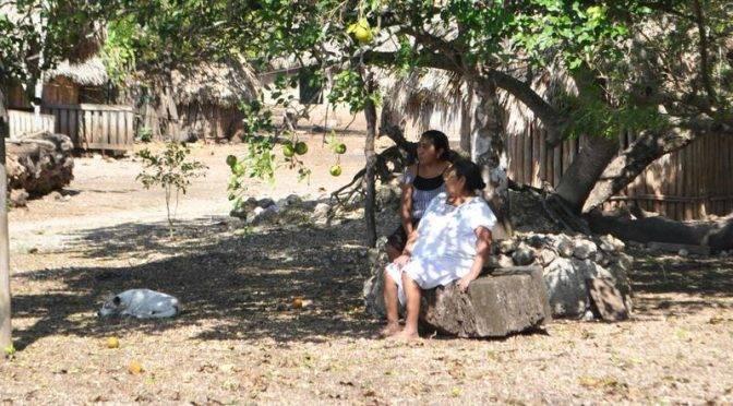 México: Indígenas, marginados y afromexicanos, con prioridad para tener agua (La jornada)