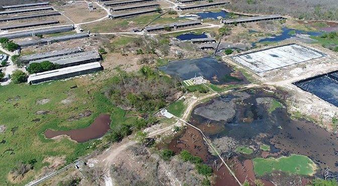 Yucatán: La amenaza oculta de las granjas intensivas: una bomba de residuos en el 'Anillo de los cenotes' (Play Ground)