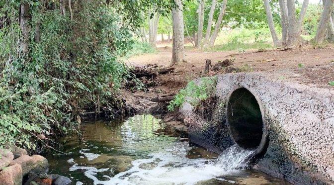 España: Cerveza para salvar los ríos y los mares (El país)