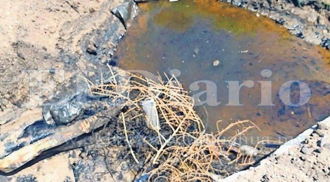 Chihuahua: Crece contaminación de combustible en arroyo de Camargo (El Diario.mx)