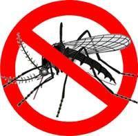 El dengue; una amenaza que vuela (Infografía)