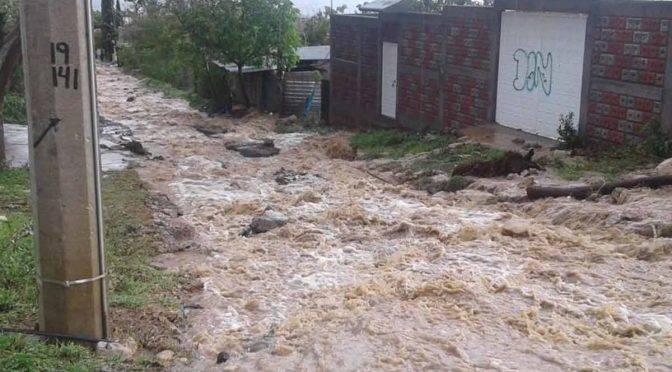 Oaxaca: Fuerte lluvia deja severos daños (Excelsior)