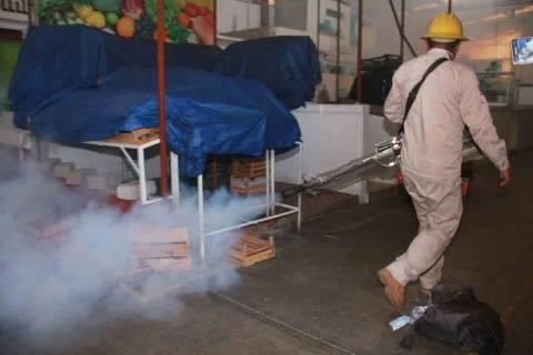 Oaxaca: intensifican acciones preventivas por casos de dengue (Excelsior)