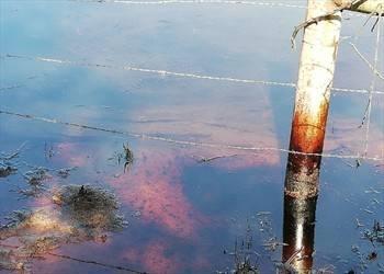 México: Derrames contaminan 54 puntos (El Heraldo de México)