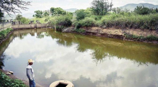 México: Agricultura el mayor consumidor de agua en el país con el 76 por ciento (Tribuna)