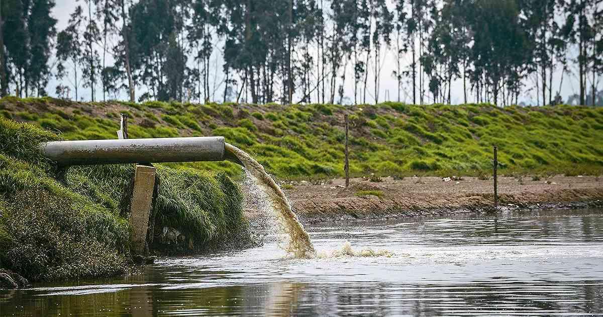 Tratamiento biológico de las aguas residuales de la cuenca central de México