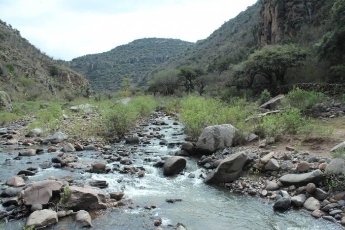 ¡Agua por favor! (El Sol de Zacatecas)