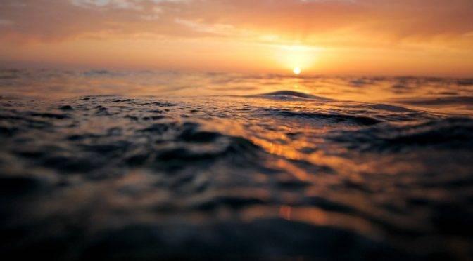México: El desierto más remoto del mundo está en el océano, y los científicos ahora saben quién vive allí (Actualidad)