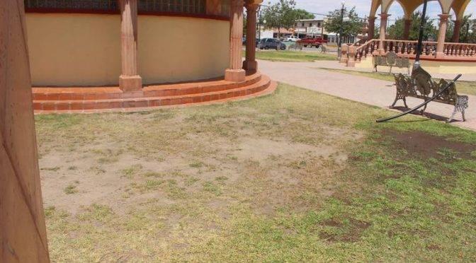 Chihuahua: Escasez de agua afecta a parques (El Mexicano)