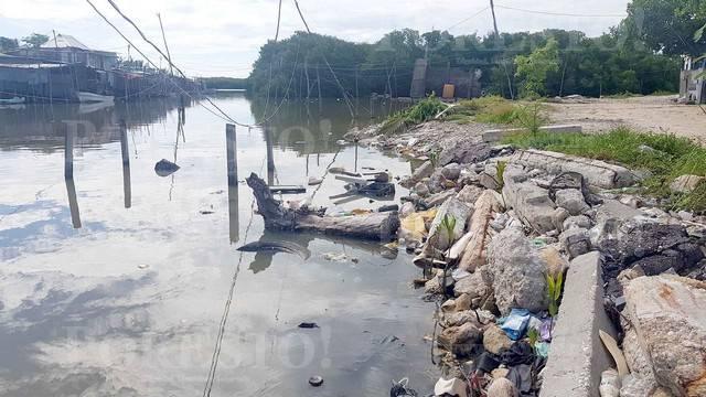 Campeche: Riqueza natural fue sepultada con basura (PorEsto)