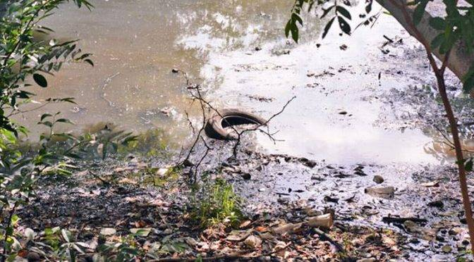 Tabasco: ¡Aguas con el agua! (El Heraldo de Tabasco)