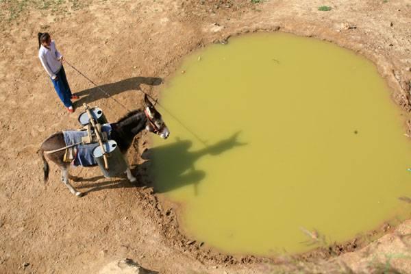 Disponibilidad de agua en el futuro de México