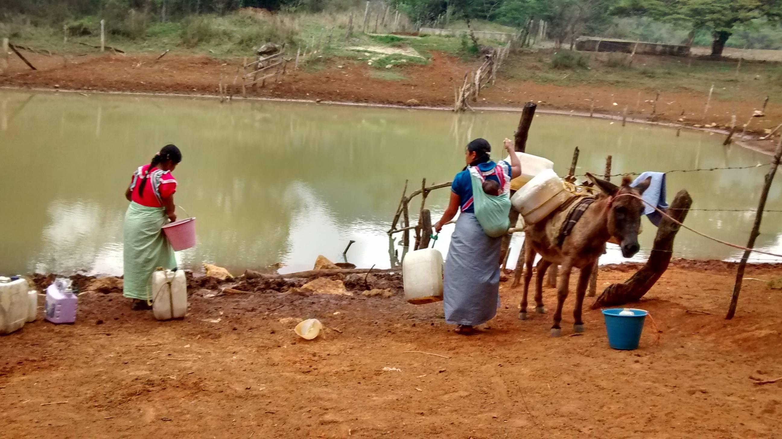 Chiapas: Calidad del agua en Tuxtla Gutiérrez es mala: García (sin fuero)