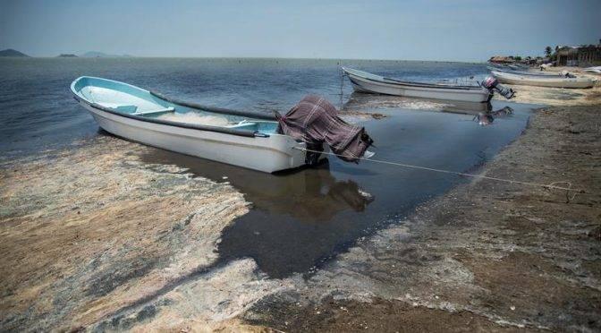 Oaxaca: Contaminan con aguas negras 35 mil héctarias de la Laguna Superior (El Universal)