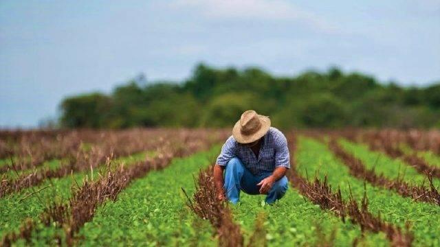 Agricultura, la clave para cuidar el agua en México: TNC (Forbes)