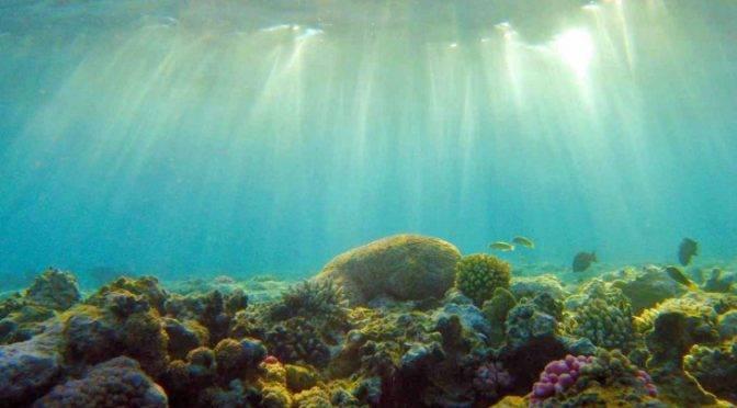 Europa: Parece que las administraciones estan recuperando la calidad del agua (ecoticias)