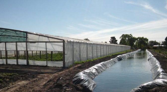 CDMX: Necesario, establecer políticas para un mejor uso y conservación del agua y el suelo (almomento)