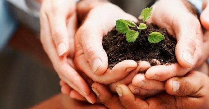 17 de julio Día del Defensor del Medio Ambiente