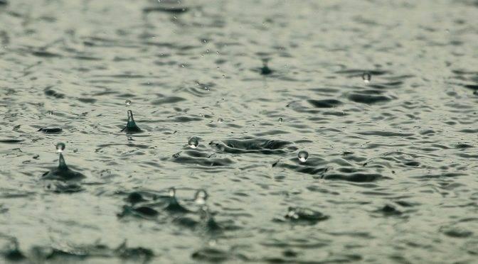 CDMX: El agua de lluvia no es saludable para beber, pero así la puedes reutilizar (MILENIO)