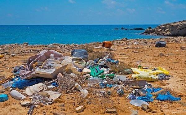 Contaminación por plásticos: causas, consecuencias y soluciones (Ecología Verde)