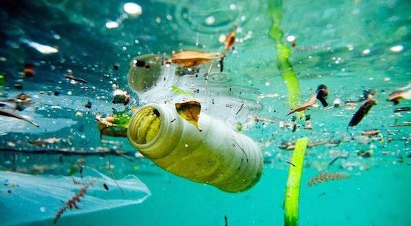 México: Urge, atender la problemática de la contaminación del agua por residuos en ríos, lagos y mares (InfoRural)