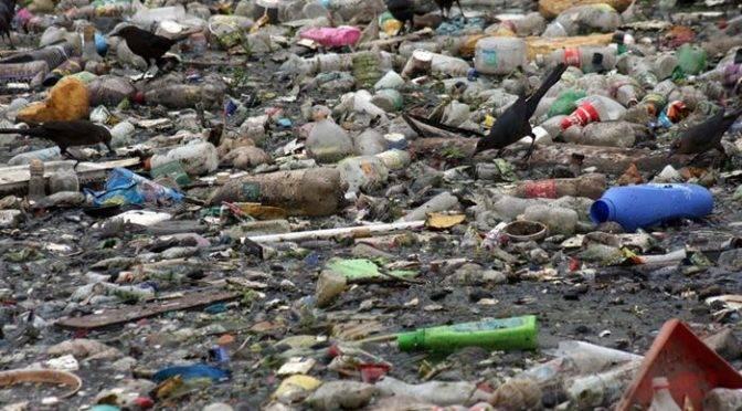 Hidalgo: Tiradero pone en riesgo a hidalguenses (El Universal online)