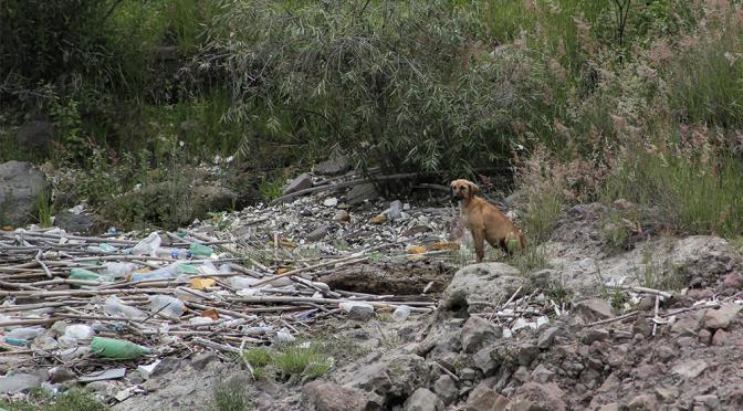 Puebla: Descargas clandestinas afectan a ríos y presa (El Popular)