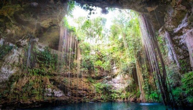 CDMX: Cenotes en Yucatán: lo que debes saber antes de ir a conocerlos (El Universal)