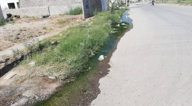 Coahuila: aguas negras generan molestias en vecinos de la colonia Villas de Zaragoza en Torreón (Telediario)