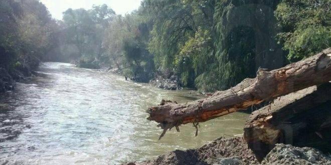 Edomex: Se difunde hoy resolutivo ambiental de Santa Lucía (La jornada)