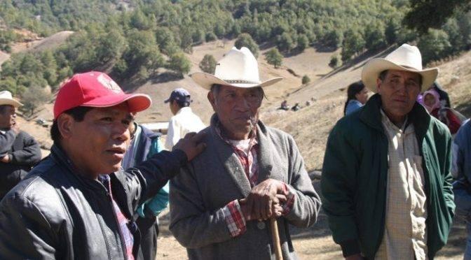CDMX: Asesinados, catorce ambientalistas en México en 2018 (La Jornada)