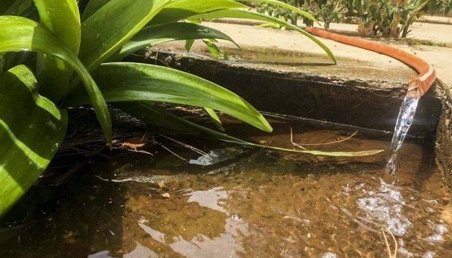 Zacatecas: agua potable, libre de arsénico (NTR Zacatecas)
