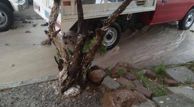 Guanajuato: Reportan obras inconclusas de SAPAL en colonia de León (milenio)