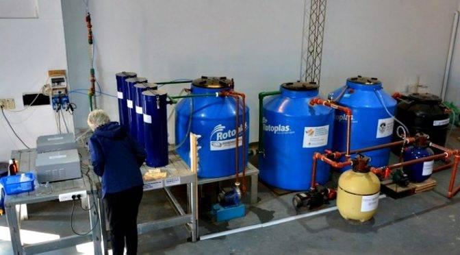 Argentina: En Verónica instalaron una innovadora planta que logra remover el arsénico del agua a bajo costo (Todo provincial)