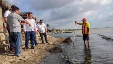 Oaxaca: Alga y aguas negras amenazan la vida de Playa Vicente, en Juchitán (La jornada)