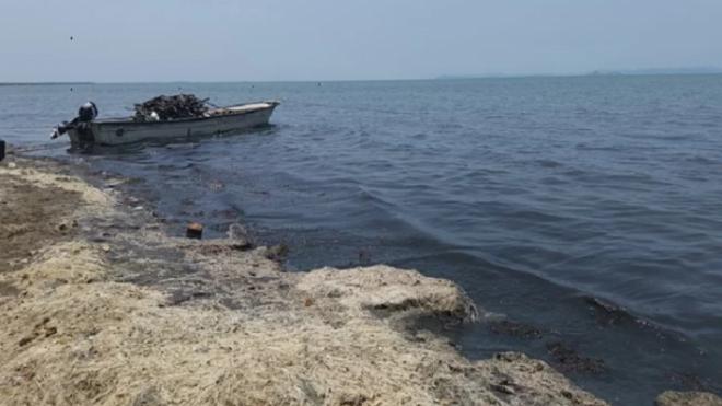 Oaxaca: Contaminación afecta turismo de playa (mx político)