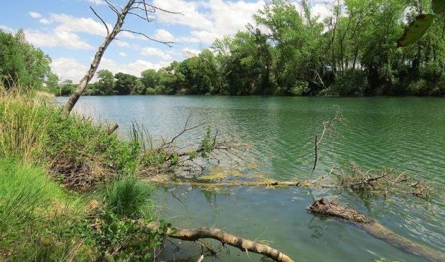 Madrid: Denuncian el mal estado de los ríos españoles (Ambientum)