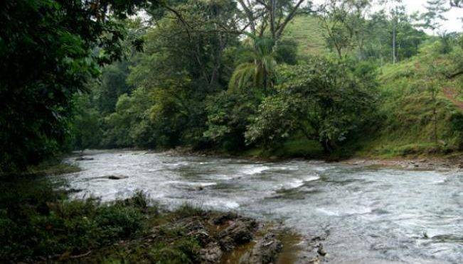 Querétaro: Río El Pueblito atrae nueva fauna (Diario de Querétaro)