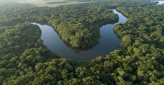 Nueva York: Valorar los ríos es fundamental dentro de los esfuerzos globales para adaptarse al cambio climático, dice nuevo informe (WWF)