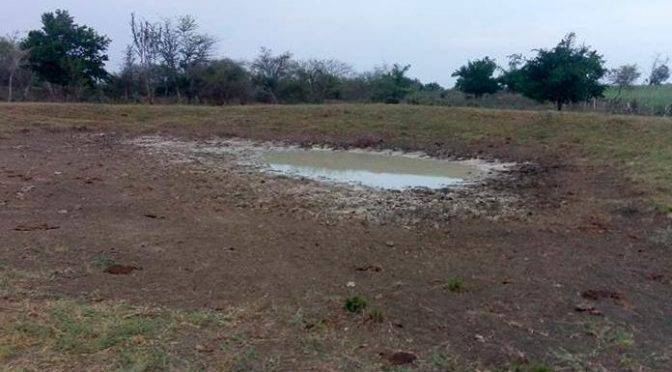 San Luis Potosí: Se secan las presas de El Carrizo (Pulso)