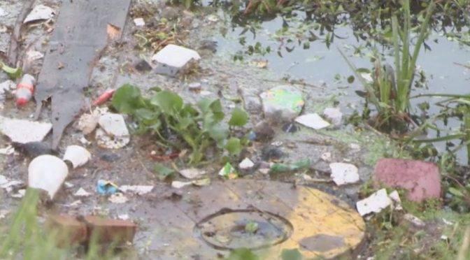 León: Estanque de agua en Cervantes Saavedra, preocupa a ciudadanos (MILENIO)