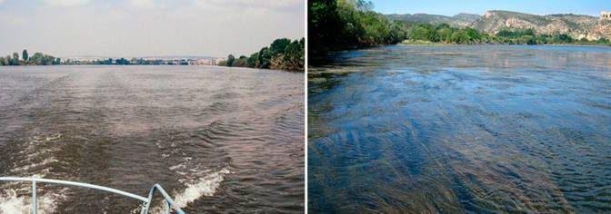 CDMX: El tratamiento de las aguas provoca cambios en la flora y fauna de los ríos (El País)