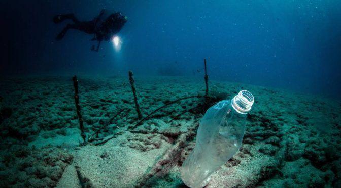 Hallan concentración extraordinaria de microplásticos en Océano Atlántico (W Radio)