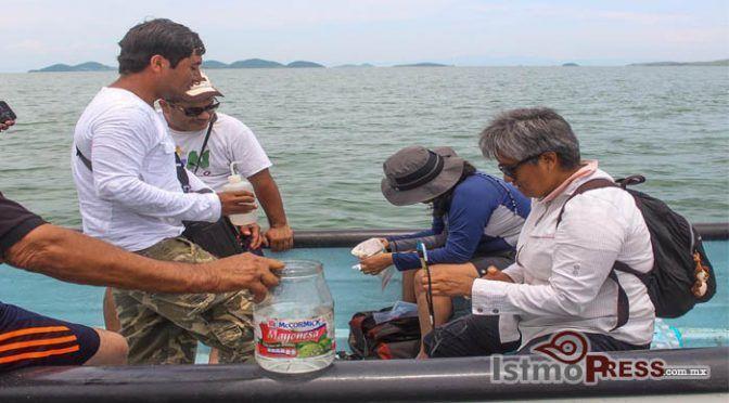 Oaxaca: Urge resolver la contaminación del Río de las nutrias para rescatar la Laguna Superior: Universidad del Mar (IstmoPress)